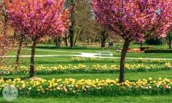 arboretum-volcji-potok-foto07