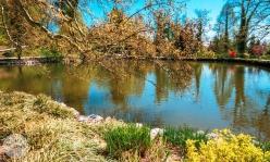 arboretum-volcji-potok-foto08