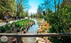 arboretum-volcji-potok-foto09