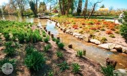 arboretum-volcji-potok-foto12