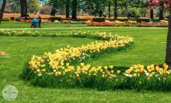 arboretum-volcji-potok-foto24