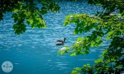 belopeska-jezera-foto09