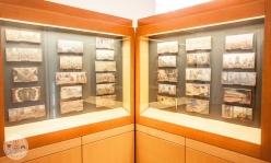 cebelarski-muzej-radovljica-foto12
