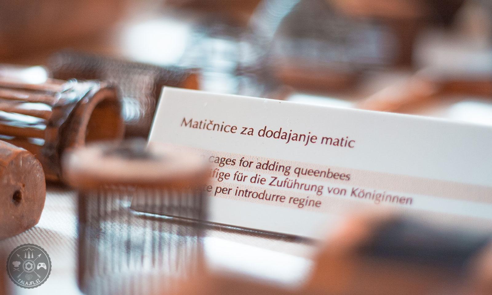 cebelarski-muzej-radovljica-foto04