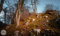 grad-motnik-tuhinjska-dolina-foto03