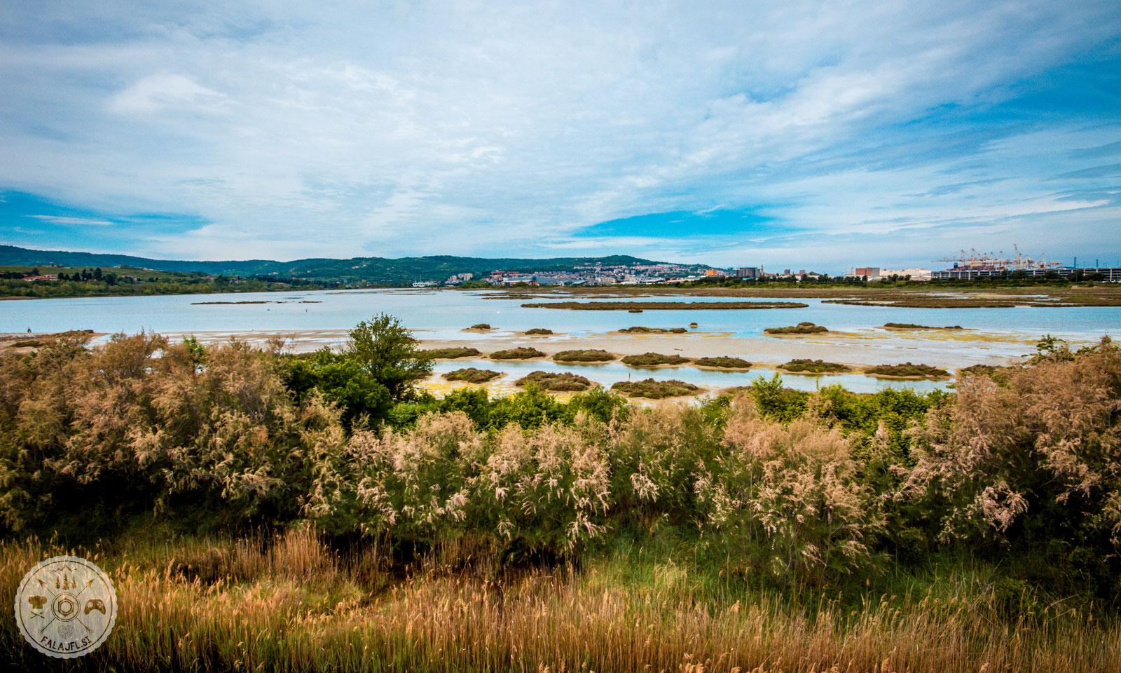 naravni-rezervat-skocjanski-zatok-foto14