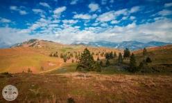 velika-planina-foto04