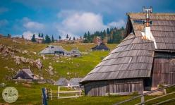 velika-planina-foto11