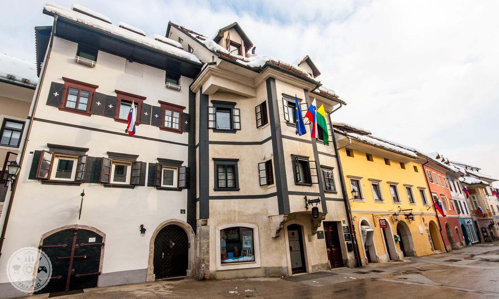 Mesto Škofja Loka ima dobro razvito družbeno javno infrastrukturo