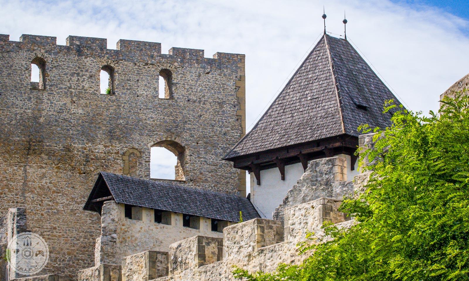 Stari grad Celje, celjski grad, celjski grofje, celje, Friderik I. Celjski, friderikov stolp
