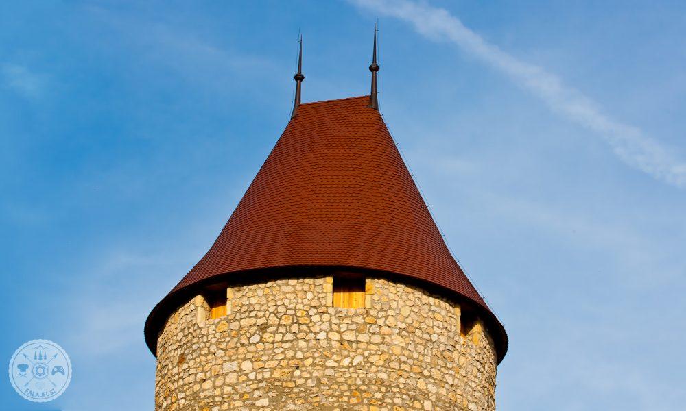 Grad Žovnek, Žovneški gospodje, Celjski grofi