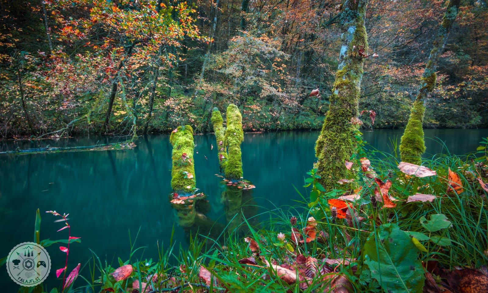 Bela krajina, reka Krupa, izvir reke Krupe