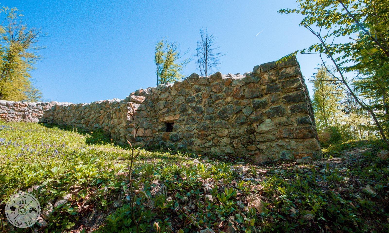 Stari grad, Arboretum, Volčji Potok