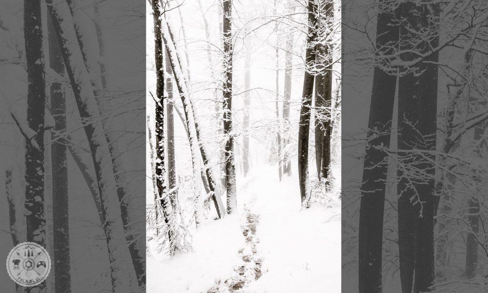 Zima 2018, Falajfl, ujeto v objektiv, sneg, sneženje