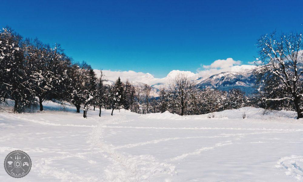 Zima 2018, Falajfl, ujeto v objektiv, sneg, sneženje, kamnik, kamniške alpe